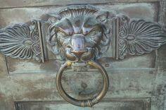 Lion verticle plate Door Knocker