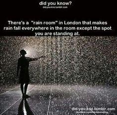 Bucket list: go to the rain room.