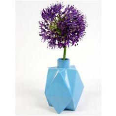 Fluffy in diamond vase