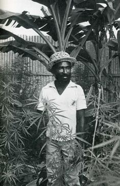 Lee Perry the Upsetter Jamaica Music, Jamaica Reggae, Reggae Rasta, Reggae Music, Reggae Style, Bob Marley, Dub Music, Lee Perry, Afro