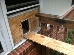 outside cat enclosure   Version 1: