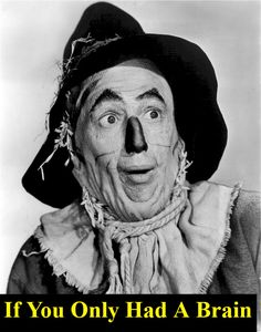 """If you only had a brain - Hello again my friend  You've seen """"The Wizard of Oz,""""   One of the greatest movies of all time… The big theme was that the main characters all thought they didn't have what it takes to get what they wanted in life… The Scarecrow thought he needed a... http://whatithinkandmore.com/if-you-only-had-a-brain/ #Inspiration, #Marketing, #Motivation, #Success"""
