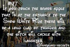 Disney world                                                                                                                                                                                 More