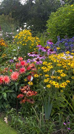 Full, bright border with contrasting colours