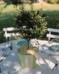 Décoration de centre de table simple rappelant la nature : une plante