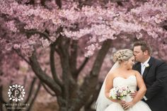 A collection of our favourite Auckland weddings, plus international wedding photography, and Auckland wedding videography. Tree Wedding, Wedding Pictures, Wedding Ceremony, Wedding Ideas, Park Weddings, Real Weddings, Engagement Photography, Wedding Photography, Bride And Groom Pictures