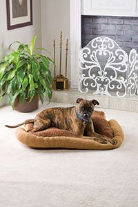 Dog Bed   Our readers are passionate about crochet for their pets and this comfy, cozy bed will have your dog dreaming sweet dreams every ni...