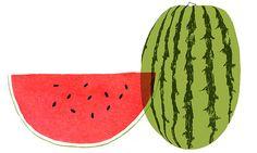 watermelon, by Claudia Pearson