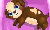 Habillage des chamoureux - Un jeu de filles gratuit sur GirlsGoGames.fr