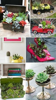 Increase Some Modern Day Design For Your Front Room With Art Deco Coffee Tables Suculentas E Cactos 5 Succulent Gardening, Succulent Terrarium, Container Gardening, Mini Cactus Garden, Succulents In Containers, Planting Succulents, Garden Crafts, Garden Projects, Hanging Plants