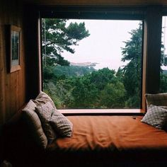 forest, bed, and window afbeelding