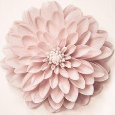 Set of 3 Prints, Floral Wall Art Set, Dahlia Prints by Allison Trentelman   Rocky Top Studio