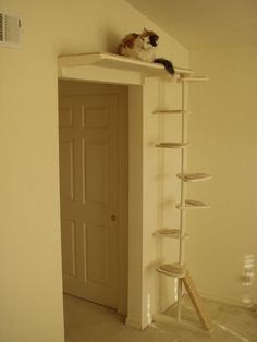 Cat Trees That Look Like Trees For Sale To buy or not to buy a cat #TreePlan - Top 10 at - Catsincare.com!:
