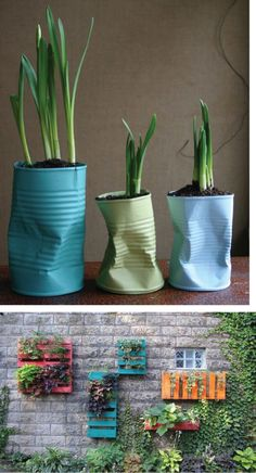 RE-FOREST YOUR IDEAS: Recycle garden containers | SENSE