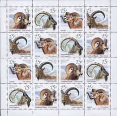 Fauna of Russia. Wild goats and rams World Wild Life, My Themes, Mail Art, Stamp Collecting, Postage Stamps, Mammals, Goats, Illustration, Sheep