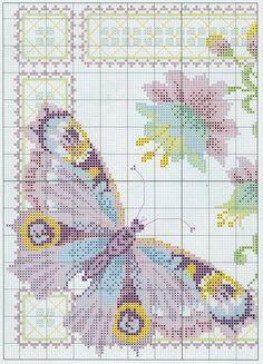 Butterfly set chart1