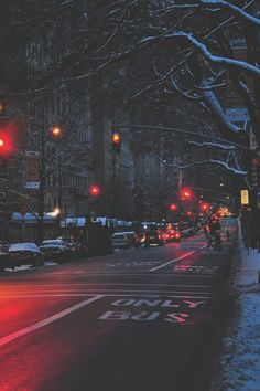 Fabulous winter night lights