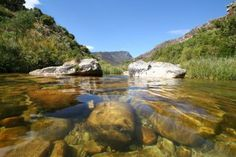 Durbanville Nature Reserve - Durbanville in Cape Town. Cape Town Tourism, Places To Travel, Places To Visit, Provinces Of South Africa, Nature Adventure, Most Beautiful Cities, Nature Reserve, The Help, Scenery