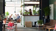 Rotterdam Delfshaven heeft 't – 6 Hotspots