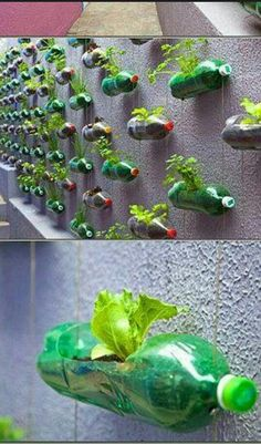 I love this! Green creative recycling ♡