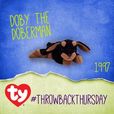 #TBT to Doby the Doberman. Like if you have Doby in your Beanie Collection! <3