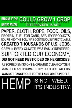 if only there was a plant. Hemp is an Industry ( marijuana cannabis ) Oil Benefits, Healing Herbs, Hemp Oil, Way Of Life, Medical Marijuana, Good To Know, Herbalism, The Cure, Weed Facts