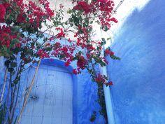 【すごい…】全面に広がる「青の世界」。奇跡の街モロッコ「シャウエン」に誰もが心を奪われる - Find Travel