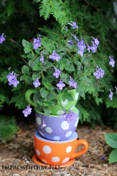 #pottery #planters #pots #containers  Tipsy Pots Gallery - also known as topsy turvy towers - polka dot teacups with purple flowers