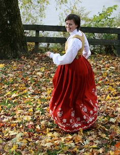 National costume from Follo in Akershus, Norway (striking colors :) )