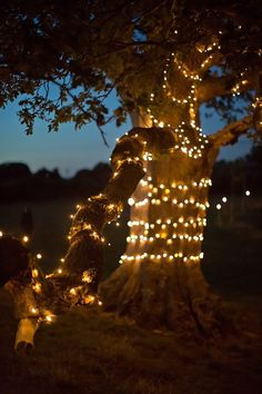 Styling outdoors at your wedding reception - Outdoor lights | CHWV