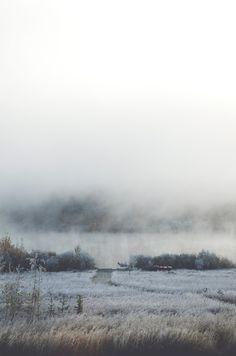 serendipitousromance:    thephotographyqueen:    woke up to a frosty yard and a foggy lake    beautiful
