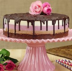 Neapolitan Nutella Cheesecake - Everyone will think that this perfect cake came from a bakery. But it wasn't even baked! Nutella Cheesecake, Cheesecake Recipes, Dessert Recipes, Strawberry Cheesecake, Food Cakes, Cupcake Cakes, Super Cookies, Cake Cookies, Nutella Cookies