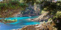 Cavalaire-sur-Mer | Golfe de Saint-Tropez