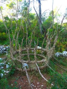Contemporary Basketry: Spencer Byles/A Year in a French Forest