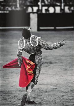 Jose Maria Manzanares, torero. Gorgeous photo