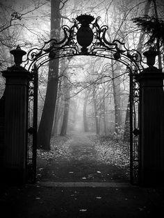 ༺ღ༻Garden of Dreams༺ღ༻