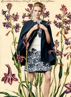 Dolce & Gabbana SS 2014 l A beautiful #botanical lookbook for a beautiful collection (VI) ♥ l #fashion #illustration