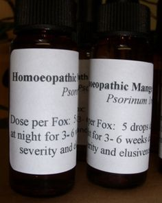 Homeopathic Mange Treatment for Foxes | Wildlife Aid