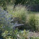 Creative use of Indian Grass!