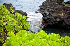 Wainapanapa State Park, Maui Creative Photography, Original Image, Maui, State Parks, River, Outdoor, Outdoors, Outdoor Games, The Great Outdoors