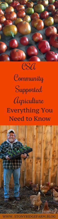 Create your seasonal life by choosing a CSA (farm share) to bring seasonal foods to your home. Not sure what a CSA really is? Click to learn everything you need to know to choose well and be a perfect farm share member. #seasonaleating