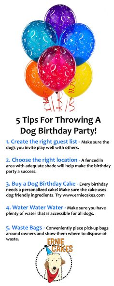 Tips for throwing the best dog birthday party!