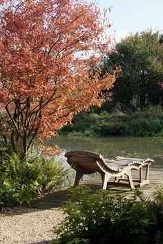 1669 Besten Outside Bilder Auf Pinterest In 2018 Garden Plants