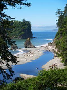 Ruby Beach, by Michael Brunk.Ruby Beach, Olympic Peninsula, Washington.