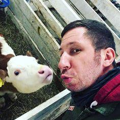 Knutsch me Du Kuh.