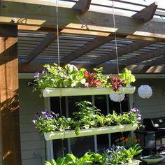 50 Easy Apartment Herb Garden Designs To Try Hanging Gutter Garden Apartment Herb Gardens, Jardim Vertical Diy, Gutter Garden, Vertical Garden Wall, Vertical Gardens, Herb Garden Design, Garden Oasis, Diy Garden, Garden Boxes