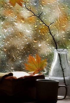 Books, tea and rain drops Rain Gif, Rain Wallpapers, I Love Rain, Autumn Rain, Rain Days, Beautiful Flowers Wallpapers, Rain Photography, Good Morning Flowers, Autumn Scenery