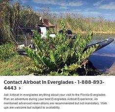 Airboat In Everglades Miami Florida Everglades Miami, Miami Florida, Habitats, Things To Do, Scenery, America, Vacation, Explore, Adventure