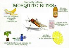Mosquito bite remedy
