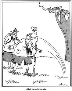 the far side comics online Cartoon Jokes, Funny Cartoons, Funny Comics, Funny Jokes, Hilarious, Funny Sarcasm, Gary Larson Comics, Gary Larson Cartoons, Far Side Cartoons